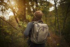 Rear view of woman walking through forest, carrying rucksack - stock photo