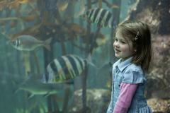 Young girl enjoying tropical fish in aquarium Stock Photos