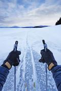 Male arms holding skipoles in vast landscape, Colter Bay, Wyoming, USA - stock photo