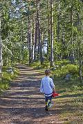 Young boy wandering along forest path Stock Photos