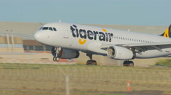 4k video of Tiger airplane landing at an airport Stock Footage