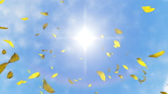 Falling leaves against blue sky - stock footage