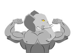 Strong angry elephant. aggressive Evil beast fitness. Wild animal athlete wit Piirros
