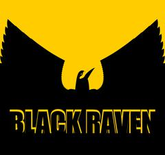 Black raven on yellow background. Big Bird. Spread wings. Silhouette Crow of  Stock Illustration