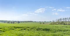 rural springtime scenery - stock photo