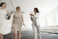Three young businesswomen preparing in new office Stock Photos