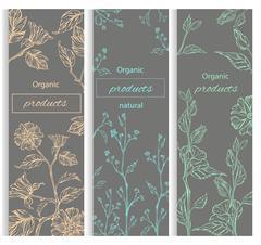 Floral, botanical decorative banner Stock Illustration