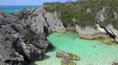 Flock of White-tailed tropicbird over Jobson's Cove Beach. Bermuda. - stock footage