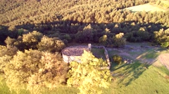 Aerial view: Pine forest morning/sunset. Include a medieval place, romanesque - stock footage