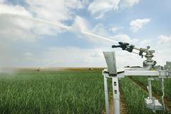 Irrigation sprays on field plant crop due to prolonged drought, Rilland, Stock Photos
