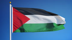 Palestine  flag in slow motion seamlessly looped with alpha - stock footage