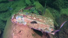Old tiles on the bottom of the sea. Stock Footage