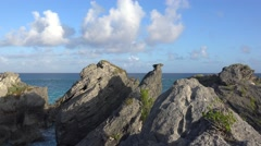 Scenic  limestone cliffs at South Shore National Park. Bermuda. Stock Footage