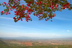 Great Rift Valley - stock photo