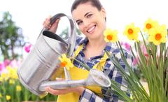 gardening smiling woman with watering can. narcissus flowerbed - stock photo