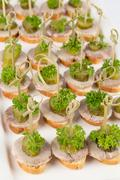 Closeup canapes and snacks for catering Stock Photos