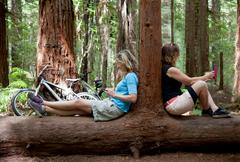 Two mid adult women looking down at smartphone and digital tablet in forest - stock photo