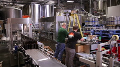 3333  a case of bottled beer comes off assembly line at micro brewery - stock footage