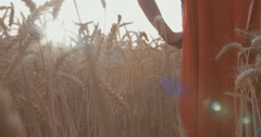 Boy standing with a red cape in a golden wheat field Stock Footage