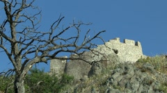 Landscape with dead tree and a fortified wall. - stock footage