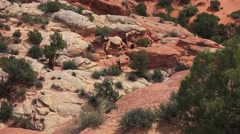 Fiery Furnace Overlook, ARCHES NATIONAL PARK Stock Footage
