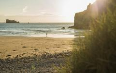 Distant view of male teenage surfer walking toward sea, Camaret-sur-mer, Stock Photos
