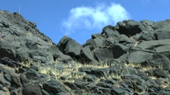 The black volcanic rock. Stock Footage
