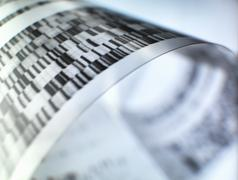Close up of autoradiograph used in researching genetics Stock Photos