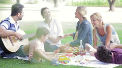 Family and friends enjoying weekend picnic Stock Footage
