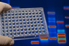 DNA testing in genetic laboratories. Stock Photos