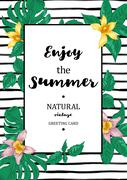 Tropical Summer Exotic Menu Fruits Card Stock Illustration