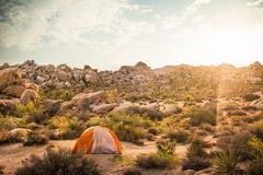 Tent, Joshua Tree National Park, California, US Kuvituskuvat