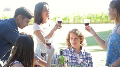 Group of friends clinking wine glasses outdoors Stock Footage