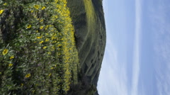 2axis MoCo Time Lapse of Wildflower Super Bloom in Carrizo Plain -Vertical- Stock Footage