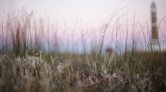 Breeze blowing through grass near lighthouse - stock footage