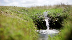 Small stream flowing over grass Stock Footage