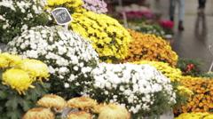 Sidewalk flower shop Stock Footage