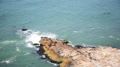 Seals basking on rocks, Cabo Polonio, Rocha Department, Uruguay Stock Footage