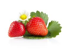 Whole strawberries isolated with flower,leaves on white background Stock Photos