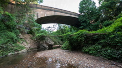 View of bridge over stream in wooded area Stock Footage