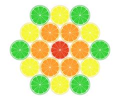 Set of citrus in the cut. Vector EPS10 Stock Illustration