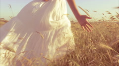 Gorgeous lady caressing corn field walking at sunset Stock Footage