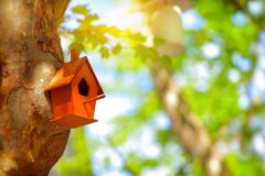 Cute little nesting box - stock photo