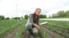 Farmer in agricultural field using digital tablet - stock footage