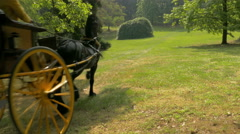 Two women driving an Old-fashioned Horse and buggy in the Italian countryside. Stock Footage