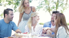 Family enjoying picnic outdoors Stock Footage