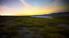 2axis MoCo Astro Time Lapse of Milky Way over Wildflower Super Bloom -Tilt Up- Stock Footage