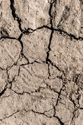 Dry mud, textured background of drought Kuvituskuvat