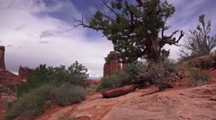 ARCHES NATIONAL PARK, landscape pan Stock Footage
