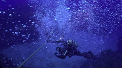 Divers plunge to a depth seabed along the ropes. Stock Footage